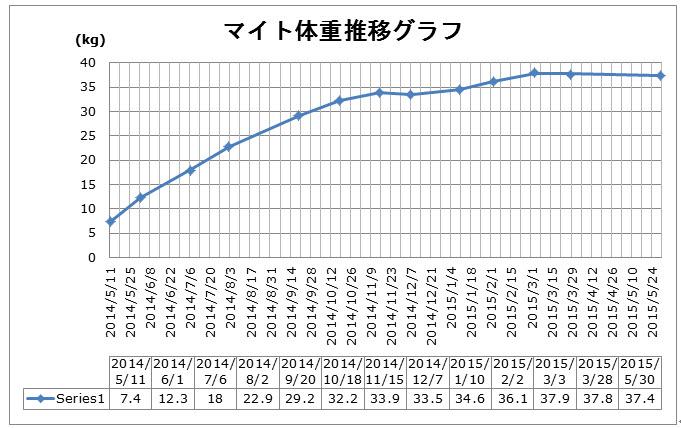 マイト体重推移_2015-06-08 13-44-55